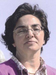 Isabel Caetano da COTEC