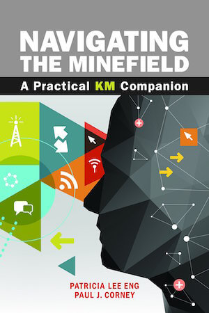 Navigating the Minefield - capa