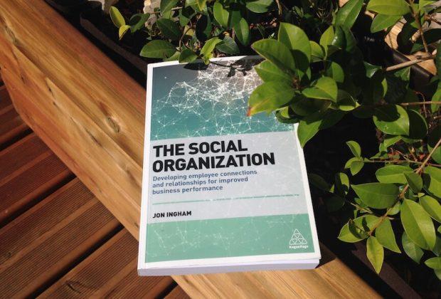 The Social Organization - foto