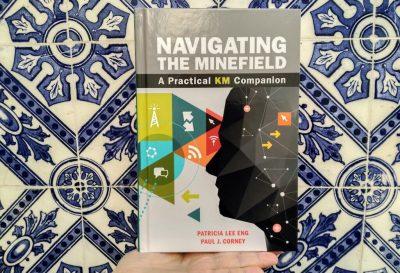 Navigating the Minefield - foto do livro